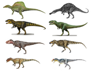 8 giant theropods