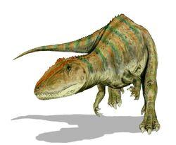 Carcharodontosaurus saharicus.jpg