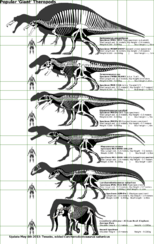Popular Giant Theropods.png