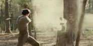 Abe shattering tree