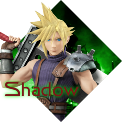 Shadow Profile 1.png