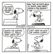 Snoopy and the cat that live next door