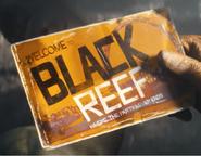 BlackReefPamphlet