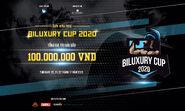 2020 Biluxury cup