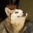 NightstarTheLeader's avatar