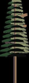 Pine.png