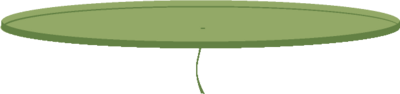 Lily Pad.png
