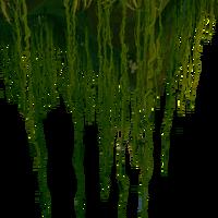 BF Grassy Vines.png