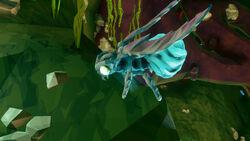 Fester flea closeup.jpg
