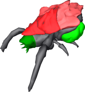 Glyphid Menace Umodel Top.png