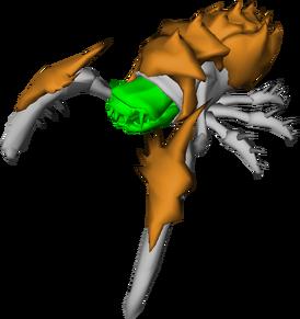 Glyphid Acid Spitter Umodel Top.png
