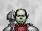 Aksel Kriegpriester