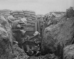 250px-Trencheswwi2.jpg