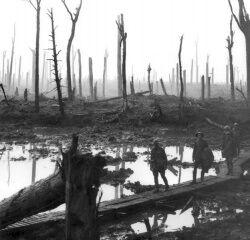 250px-Chateau Wood Ypres 1917.jpg