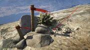 Peyote Plants GTAVe 03 Mt Chiliad View.jpg