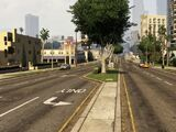 Palomino Avenue