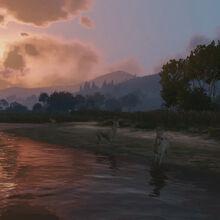 Gameplay-1-wildlife.jpg