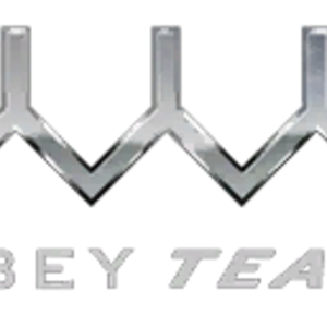 Obey-Team-Logo.png