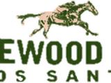 Vinewood-Rennbahn