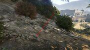Peyote Plants GTAVe 09 Zancudo valley View.jpg