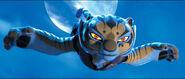 03 Tigress