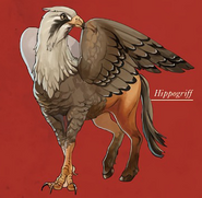 Hippogriff color