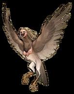 Harpy color