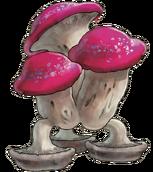 Big Walking Mushroom color