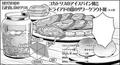 Eisbein-Style Cockatrice and Dryad Bud Sauerkraut