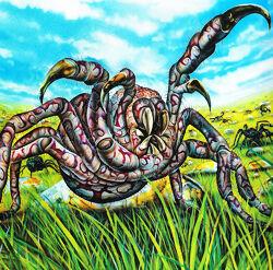 Spider250.jpg