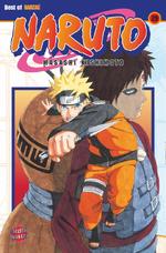 Manga Band 29