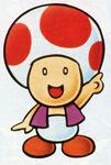 SMB Toad 4