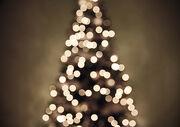 Christmas tree lights II.jpg