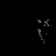 Solitaire - british Longhair 2