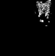 Aspirant - Aegan longhair 2