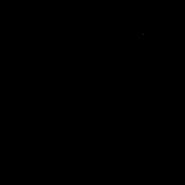 Chaton - Somali 1