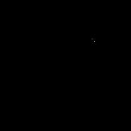 Solitaire - Oriental Shorthair 2