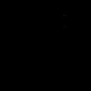 Reine - Oriental Shorthair