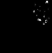 Aspirant - British Shorthair 2