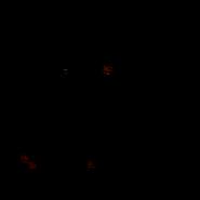 Guerrier - Main coon 3