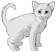 CdChaton - Abyssian.png