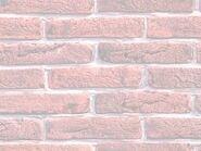 Wall50
