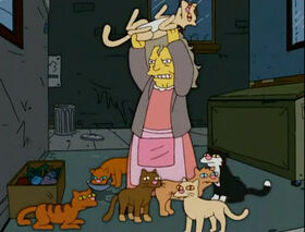 Cat lady.jpg