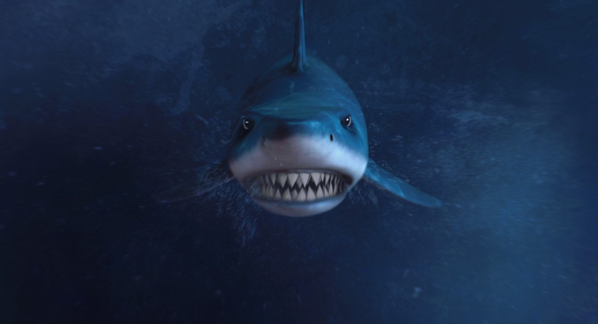 Vector's Shark