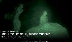 Thai Tree People and Ayia Napa Monster.JPG