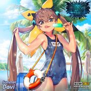 Summer Davi Banner.jpg