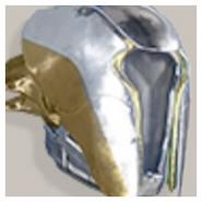 聡明なウォーロックのフード Destiny2 アイコン