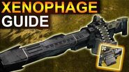 Destiny 2 Shadowkeep Xenophage Guide Verlorene Sektoren Rätsel Guide (Deutsch German)