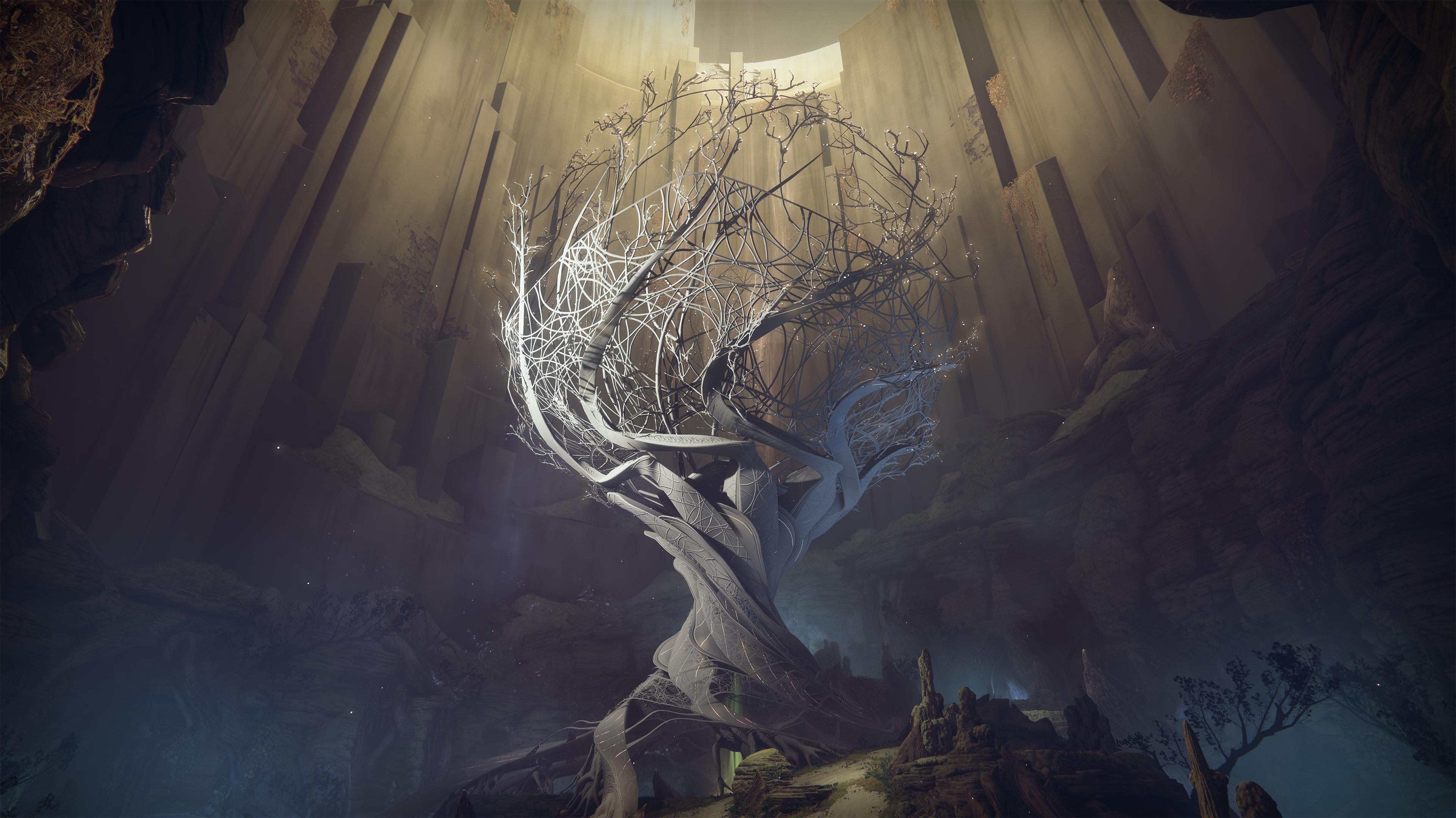 Baum der Silberflügel