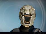 Skull of Dire Ahamkara (Year 2)